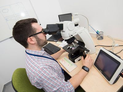 Pathologist examining slides in his office
